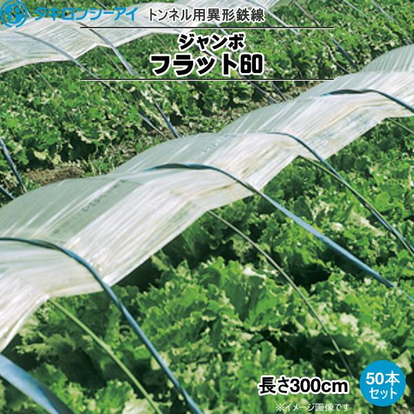 トンネル用異形カラー鉄線 フラット線(ジャンボフラット60) 長さ300cm 50本セット