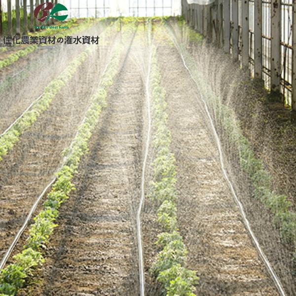 低コストなのに高性能 ハウス用潅水チューブ 住化農業資材 潅水チューブ 1巻 即納送料無料! 200m スミサンスイ ミニA オンラインショッピング