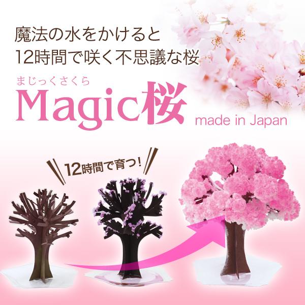 在魔法樱花樱花玩具 マジックサクラ 樱花盆景魔法樱桃开花房间的建议