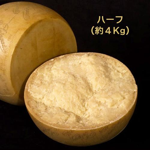 ハード セミハード チーズ ペラガッティーノ ハーフカット 約4Kg イタリア産 毎週火・木曜日発送