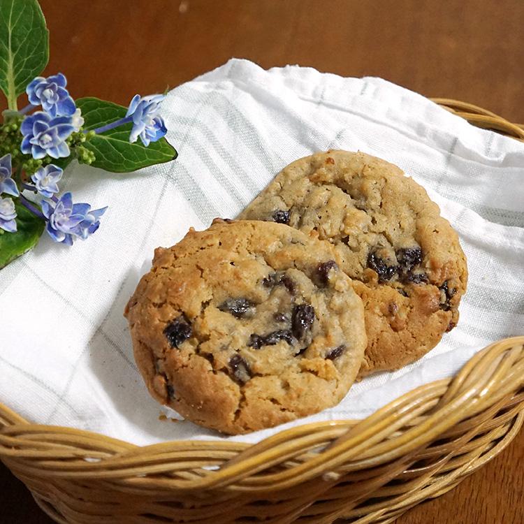 冷凍クッキー生地 「レーズンオートミール」 アメリカンクッキー 業務用 箱入り(8シート) 合計224ケ入りクッキーツリー社