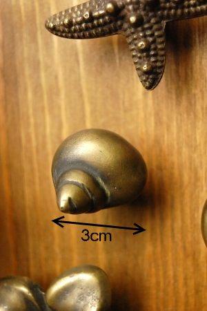 印度尼西亚铜抽屉把手 (海螺壳)