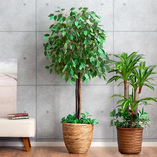 ハイクオリティ リビング オフィス 事務所やショップに おしゃれ人工観葉植物 訳あり 光触媒 人工観葉植物 フェイクグリーン 2本セット ドラセナ 幸福の木 大型 ベンジャミン インテリアグリーン
