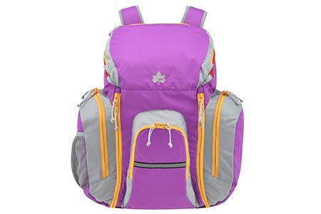 LOGOS(ロゴス) LOGOS 林間リュック(レインカバー付き)(パープル) 88240111 1602 アウトドア バッグ 鞄 かばん アクセサリー