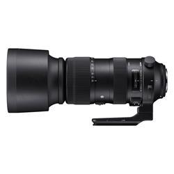 【新品/取寄品】SIGMA 60-600mm F4.5-6.3 DG OS HSM [キヤノン用]