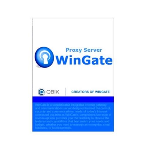 【新品/取寄品/代引不可】WinGate VPN 6ユーザーLAN VPN_NEW_G6