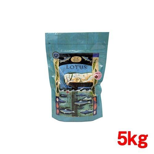 【通販限定/新品/取寄品/代引不可】グレインフリーフィッシュレシピ 小粒 5kg