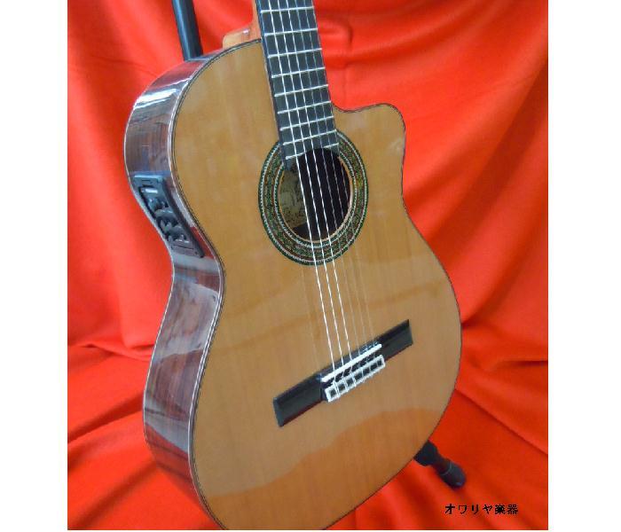 ボサノヴァギター アンプOK!カッタウェイ・ エレクトリック・スペイン製ボサノバギター