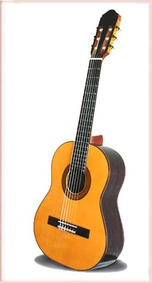 スペイン製レキントギター 専用ハードケース付