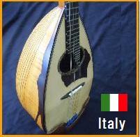 マンドリン イタリア製 手彫りリブ胴