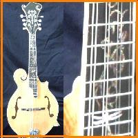 豪華で新しい フラットマンドリン Fタイプ Gibson Fタイプ ナチュラル Gibson ハードケースセット, TiCTAC:ab43e951 --- scottwallace.com