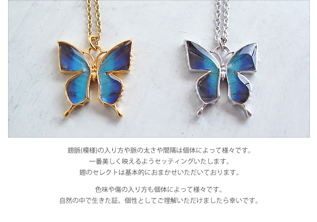 Real Butterfly Wings * Butterfly Necklace * Green