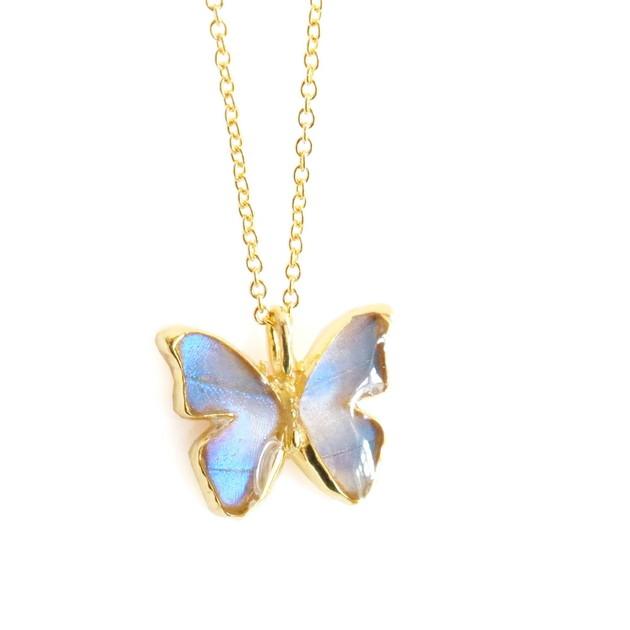 (Psyche/現品) 本物の蝶の翅 モルフォ蝶ネックレス [オーロラモルフォ]