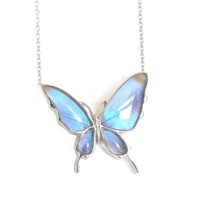 (Psyche/現品) 本物の蝶の翅 舞い飛ぶ蝶 ネックレス [オーロラモルフォ]