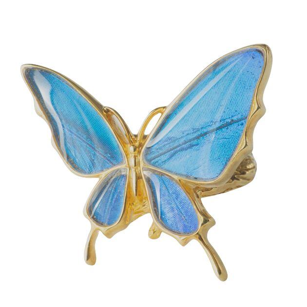 (Psyche/現品) 本物の蝶の翅 舞い飛ぶ蝶 リング =フリーサイズ= [カキカモルフォ]