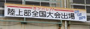 【送料無料】ダンノ (DANNO) 垂れ幕 (カラー印刷付) (90×360) D-4975