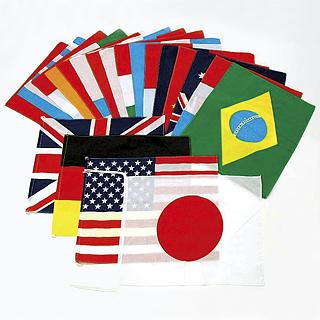 【送料無料】トーエイライト (TOEI LIGHT) 万国旗-40 B-6339