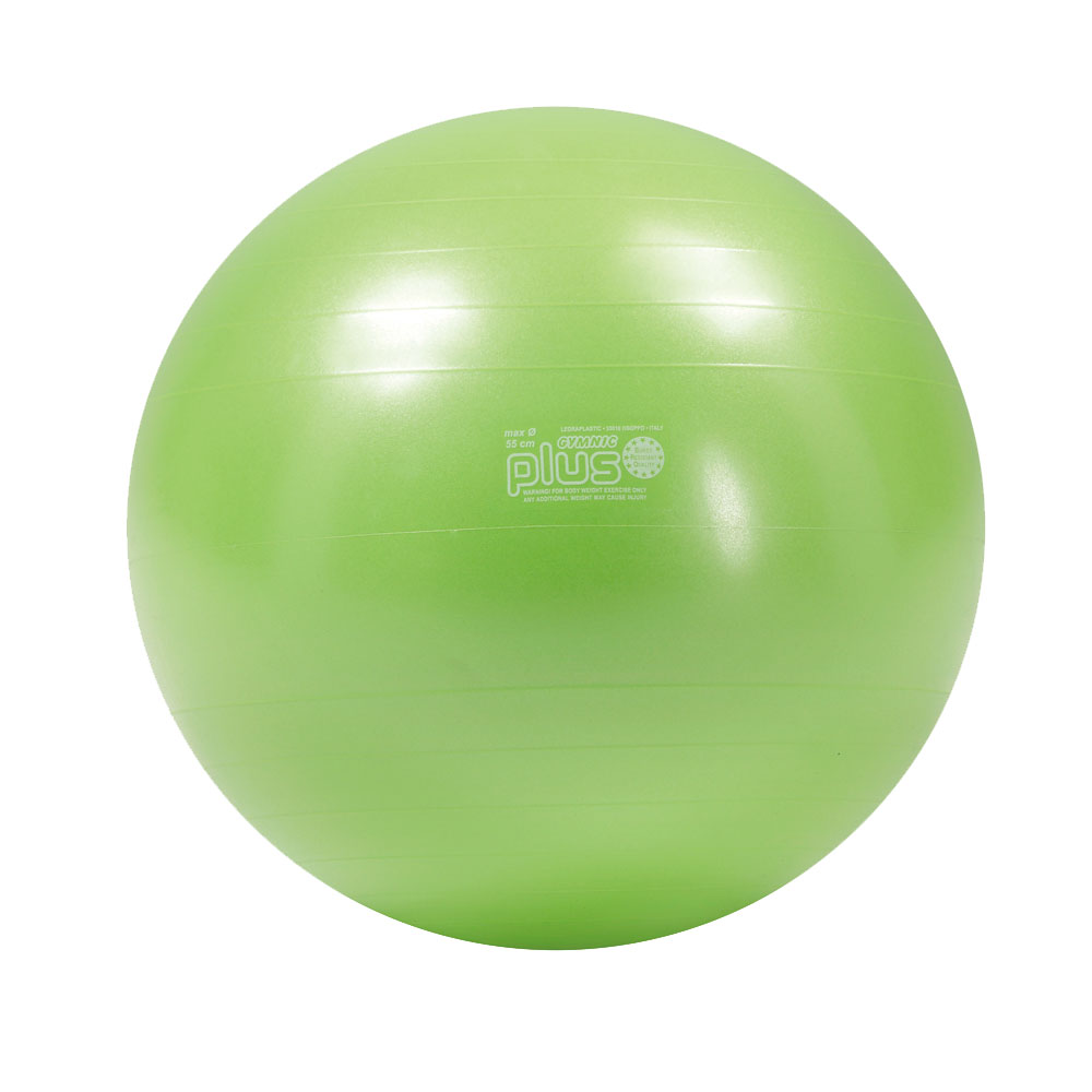 【Wアクションポンププレゼント】ギムニク PLUS55LG ライムグリーン バランスボール 55cm