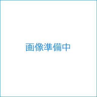 エバニュー(EVERNEW) ソフトテニスネット検定ST108 EKE595
