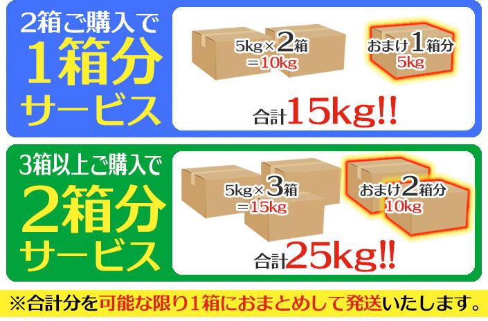 熊本県産 デコみかん5kg デコポンと同じ品種(不知火)★買えば買うほどお得なおまけ付きです!