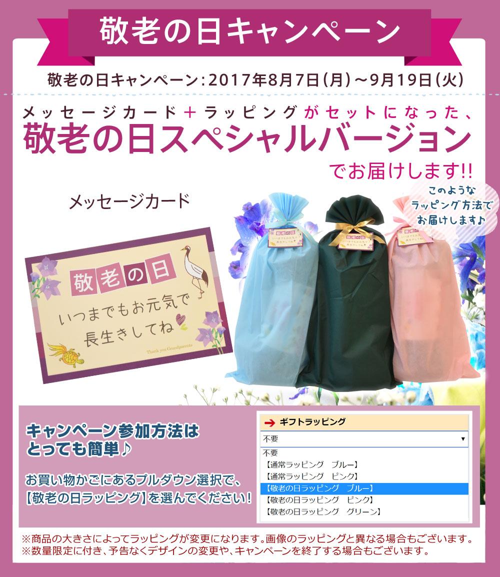 王之腿枕【日本制造/防止腰疼/礼品包装免费/极小珠子】