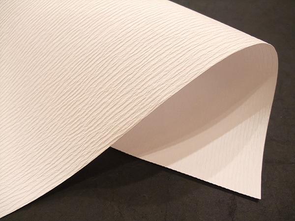 送料料金100サイズ 機械漉き お買い得品 大注目 10枚 新檀紙