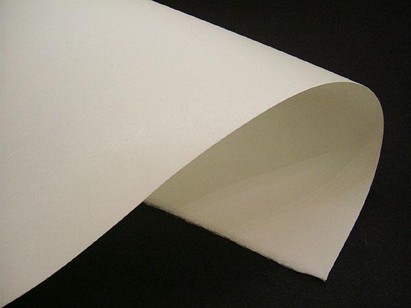 送料料金100サイズ 土佐 年末年始大決算 大規模セール 版画用 白 機械漉き表面雁皮紙