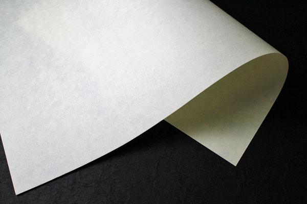 越前 インクジェット用紙 白/生成 75g/m2 20m巻