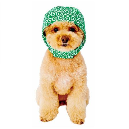 ペティオ犬用変身ほっかむり泥棒MW21736 売れ筋 メール便OK 人気上昇中 レターパックプラスOK