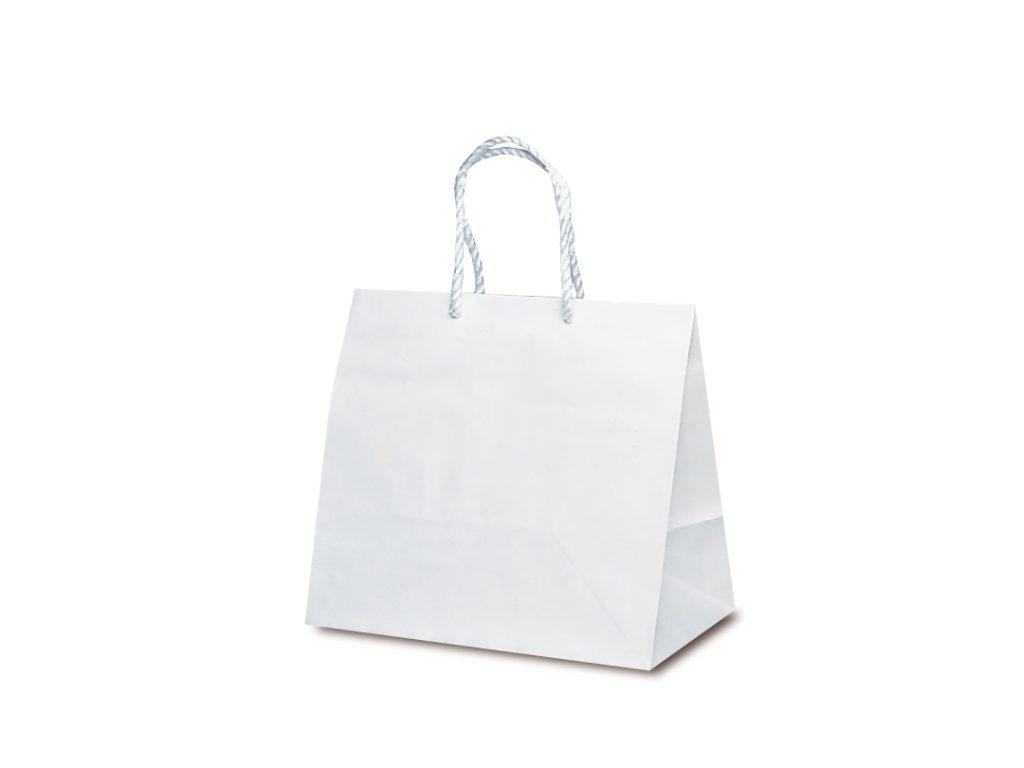 【手提袋】グレートバッグ No.10 50枚
