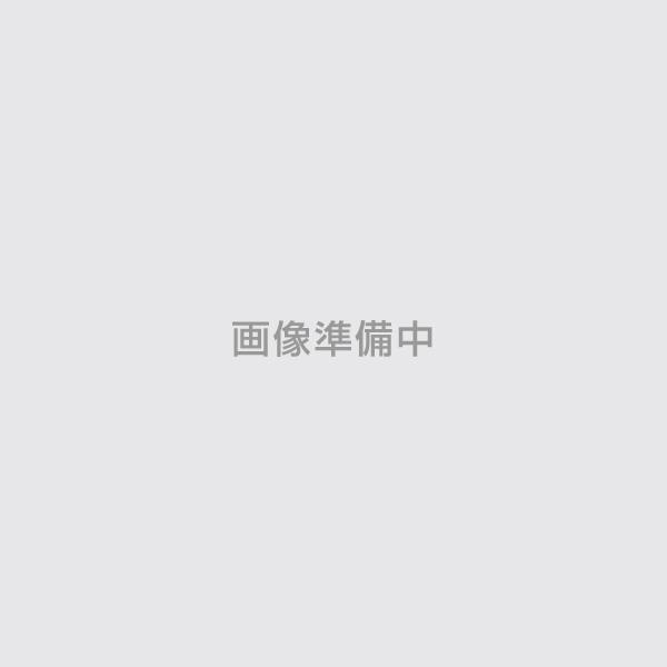 033-8150 エポシーラーマルチ 透明 14kg(ロックペイント/油性/下塗り/無機系素地)