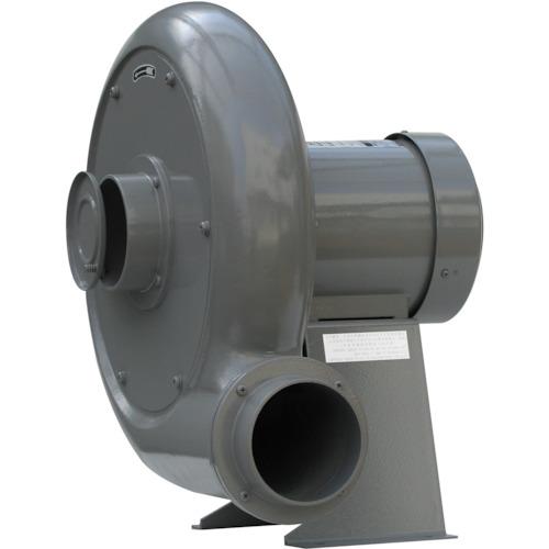 淀川電機 IE3モータ搭載ターボ型電動送風機(0.75kW)(BN5TP)