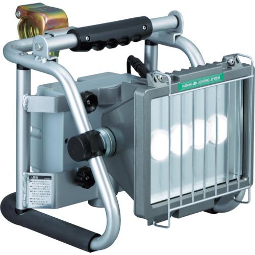 ハタヤ LEDジューデンライト 30Wタイプ(LEF30B)