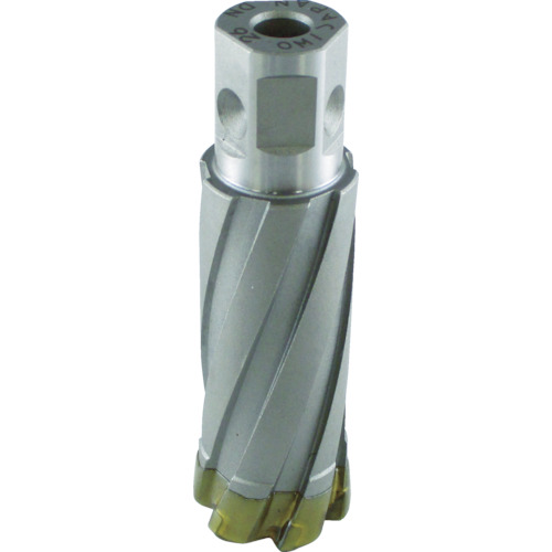 日立 スチールコア 30mm T50(332878)