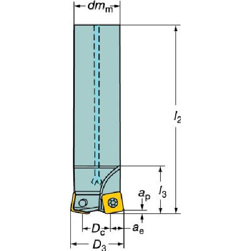 サンドビック コロミル210エンドミル(R210032A2509H)