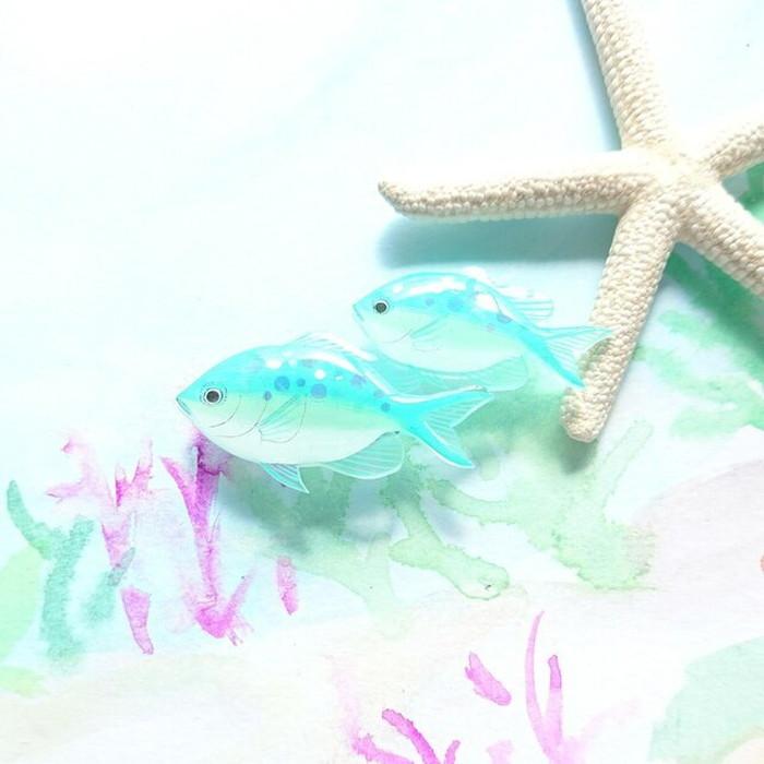 デバスズメダイのキラキラ光るブローチです デバスズメダイ ブローチ スズメダイ 海の生き物 熱帯魚 魚 かわいい 魚のブローチ レディース 信用 キラキラ 人気上昇中 おしゃれ 留め具 アクセサリー ハンドメイド