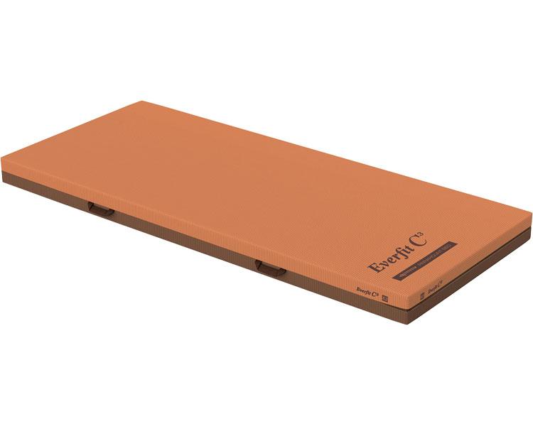 エバーフィットC3 91cm幅 通気タイプ 91cm幅 介護 KE-611TQ レギュラー レギュラー パラマウントベッドマットレス 介護 エバーフィットマットレス 寝具 体圧分散マットレス リバーシブル 介護用品, アミストダイレクトショップ:e92108ce --- data.gd.no