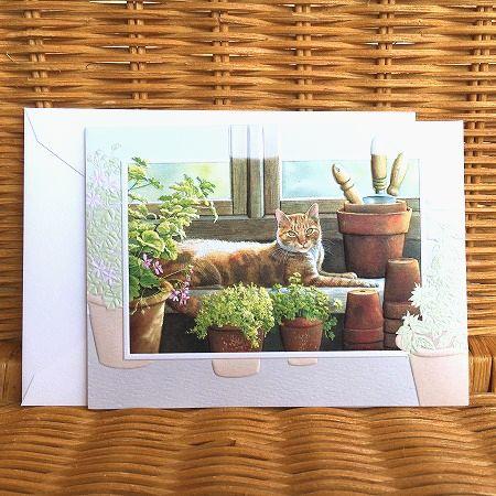 アメリカより直輸入の美しいカード USA Pumpernickel Press 格安SALEスタート サンキューカード Pea's Place Sweet 日本正規代理店品 温室のねこちゃん