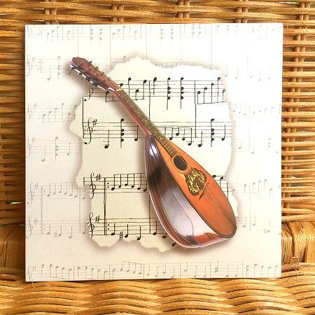 素敵な楽器のデザインの多目的カード レア 毎日がバーゲンセール 限定数のみ入荷 USA マンドリン 毎日激安特売で 営業中です 楽器のデザイン ブランクカード