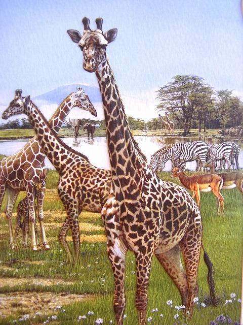 いつでも送料無料 超大判 多目的カード きりん 超激安特価 USA Press Giraffe Trio Pumpernickel