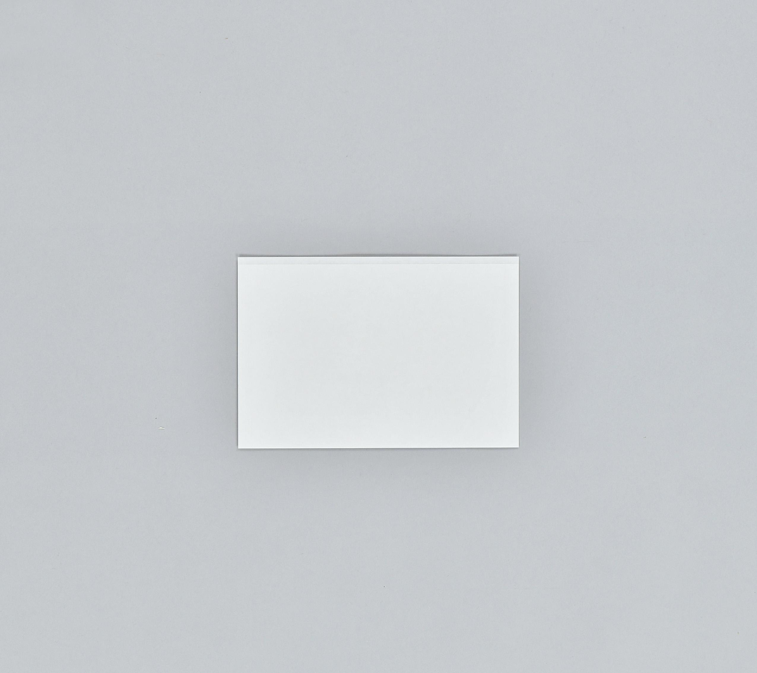 テイクアウト ラミパック No.30 無地 (5000枚/ケース)バイキング 軽食用包材 包装資材 業務用