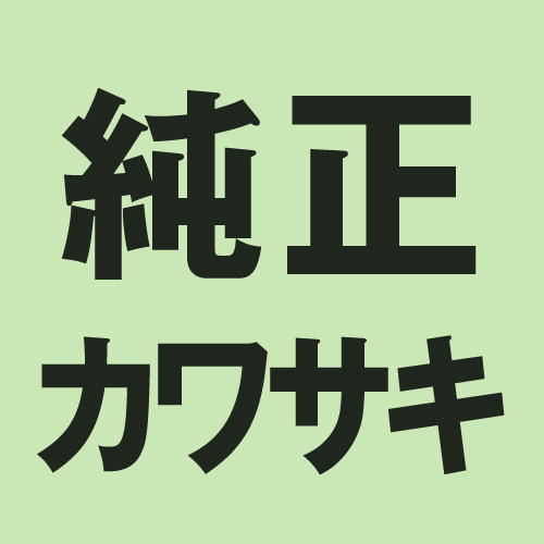- ポイント最大43.5倍 ☆最安値に挑戦 スーパーSALE 9 4-11 KAWASAKI カワサキ スペーサー カラー メンテ用品 カラー.L=14.5 純正部品 商舗 920