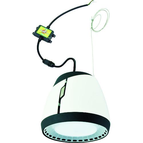 取寄 PEN-L80-60K LEDペンダントライト 日動工業 1台