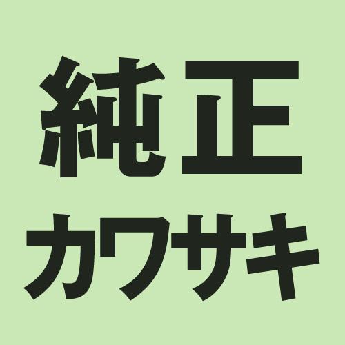 - 13088-040 純正部品 プレート KAWASAKI フリクション SALE 1枚 美品 カワサキ