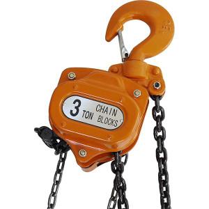 取寄 T250 チェーンブロック 3t 3.0M TR-250CB EnergyPrice(エナジープライス) 1個
