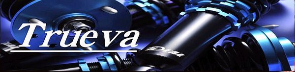 20 アルファード | サスペンションキット / (車高調整式)【イデアル】アルファード H2# Trueva 車高調キット ANH20 GGH20