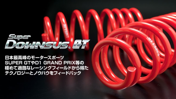 【エスペリア】スーパーダウンサス S2000 GT AP2 F22C H17/1- 赤色 1台分セット