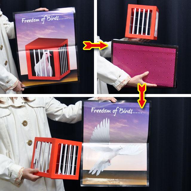 ◆決算セール◆マジック・手品★自由の鳥 ●P5031