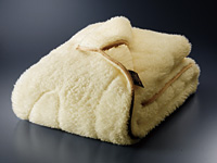 【メーカー直送・大感謝価格】The PREMIUM Sofwoolあったか掛け毛布Q 200×190cm PSF-K16Q