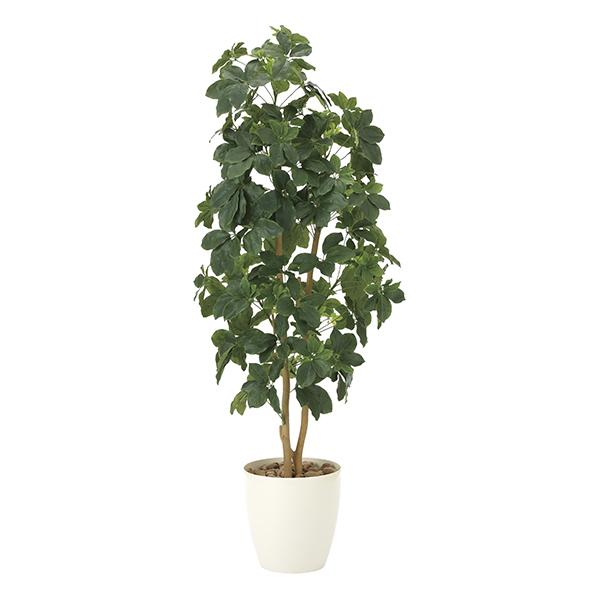 【メーカー直送・大感謝価格 】シェフレラ1.6 905A340 光触媒人工植物 光の楽園 2019 W55×D50×H160cm
